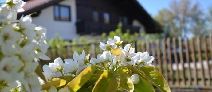 Erlebnis Haus Spiess - Maltschacher See - Herzlich Willkommen mitten in Kärnten